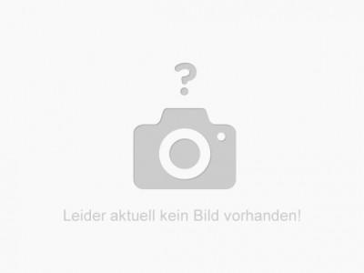 RICOH Print Toner Cartridge P 501L