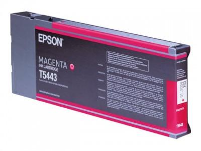 EPSON T5443 Tinte magenta Standardkapazität 220ml 1er-Pack